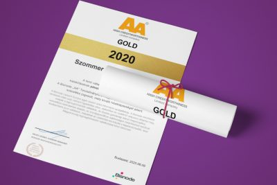 Certificate for companies with the steadiest financial standing